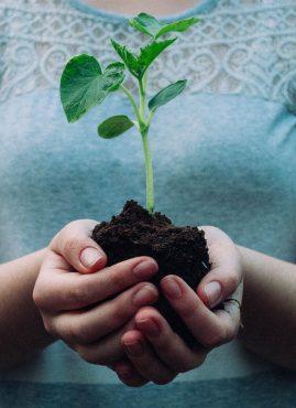 Buone pratiche per ridurre il proprio impatto ambientale