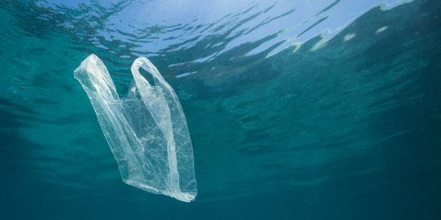 Ecomafie: il racket dei sacchetti di plastica e la storia di Cooperativa Ventuno
