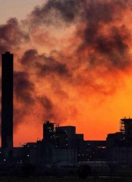 11mila scienziati dichiarano emergenza climatica: e noi cosa possiamo fare?