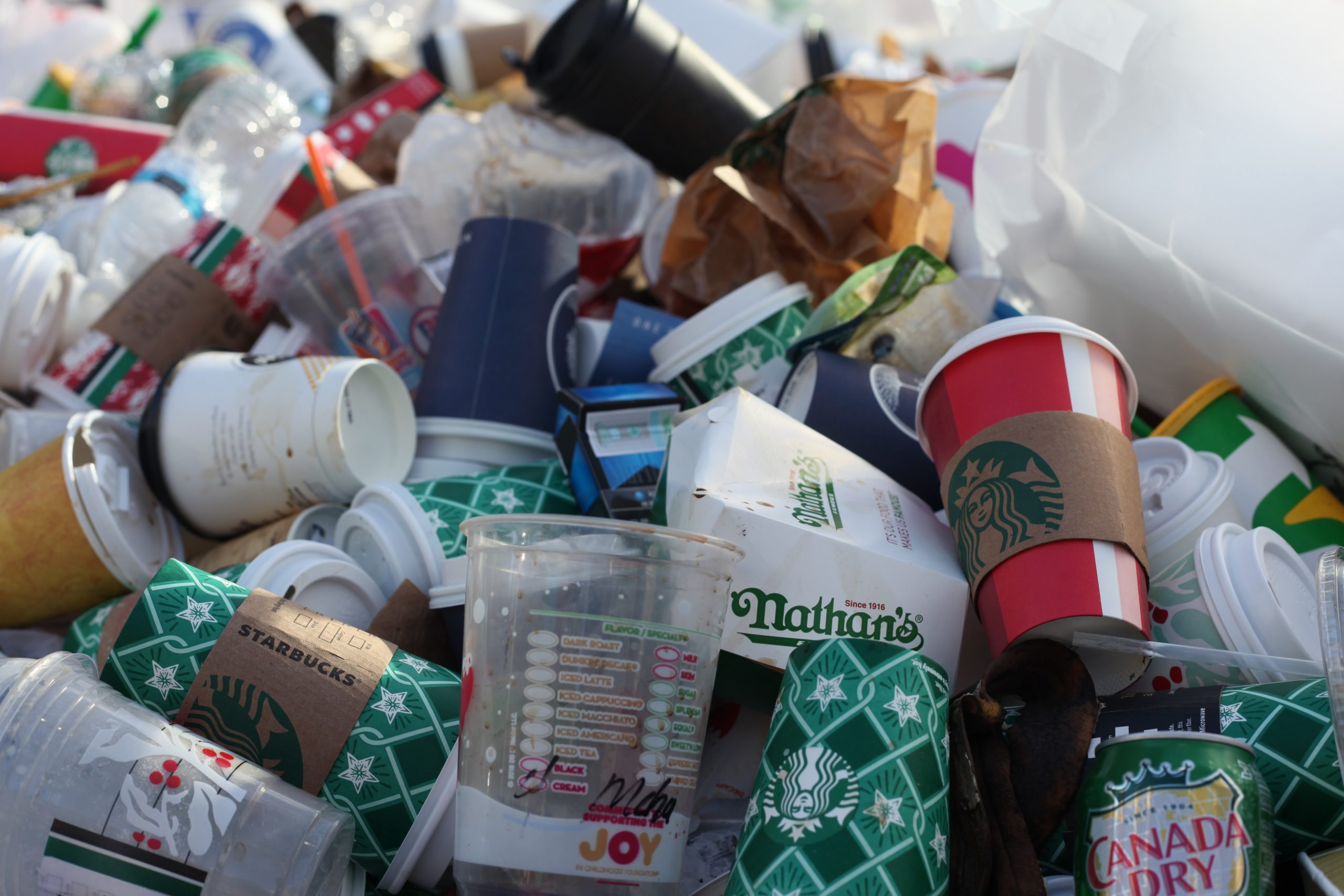 Il cibo non si butta: 5 febbraio giornata nazionale contro lo spreco alimentare