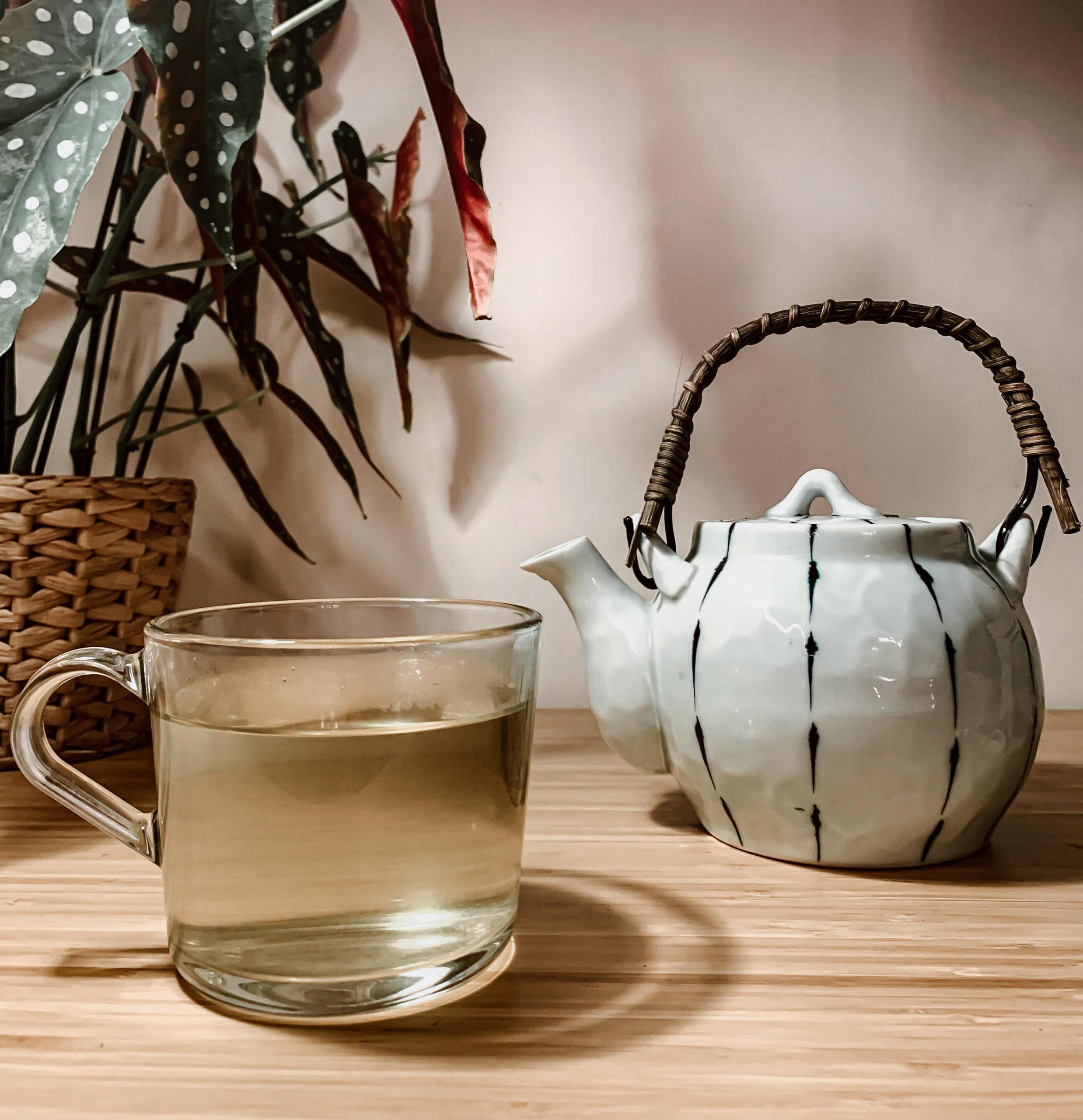 L'insostenibilità delle bustine del té: valide alternative